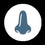 icona naso chirurgia rinologia