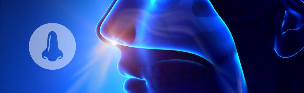 Chirurgia Rinologica Brescia - Otorinolaringoiatra